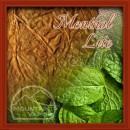 Menthol Lite